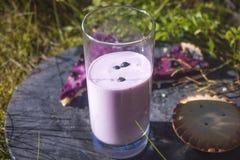 Yogur del arándano Imagenes de archivo
