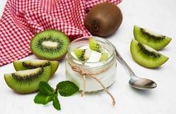 Yogur del kiwi Foto de archivo
