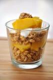 Yogur del mango Fotografía de archivo