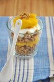Yogur del mango Imagen de archivo libre de regalías