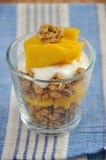 Yogur del mango Fotografía de archivo libre de regalías