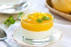 Yogur del mango fotos de archivo libres de regalías