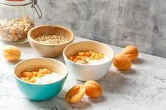 Yogur hecho en casa con las nueces del granola, del albaricoque y de pino Foto de archivo