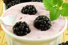 Yogur hecho en casa de la zarzamora con la fruta de la zarzamora Fotografía de archivo libre de regalías