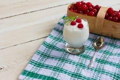 Yogur natural Fotos de archivo libres de regalías