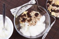 Yogur natural con muesli imágenes de archivo libres de regalías