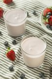 Yogur potable orgánico sano Berry Kefir imagen de archivo