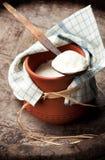 Yogur tradicional Imágenes de archivo libres de regalías