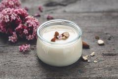 Yogur vegetariano de la leche de la almendra fotos de archivo libres de regalías