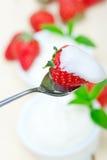 Yogur y fresa griegos orgánicos Foto de archivo