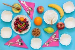 Yogur y una variedad de ingredientes para él Imagen de archivo libre de regalías