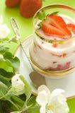 Yogurt Fotografia de Stock Royalty Free