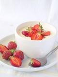 Yogurt Royalty Free Stock Photo