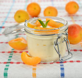 Yogurt with apricots Stock Images