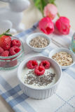 Yogurt with baked granola and berries Royalty Free Stock Images