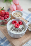 Yogurt with baked granola and berries Stock Image