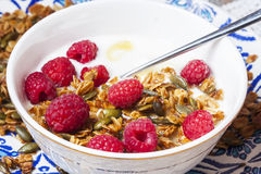 Yogurt with baked granola  in small bowl and raspberries.  Homem Stock Image