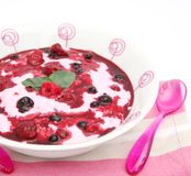 Yogurt with berries Royalty Free Stock Images