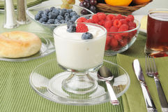 Yogurt and berries Royalty Free Stock Photography