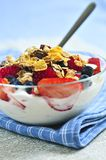 Yogurt with berries and granola Royalty Free Stock Images