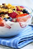 Yogurt with berries and granola Royalty Free Stock Photo