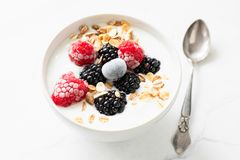 Yogurt with berries and oat flakes. In a bowl. Closeup view. Healthy eating, healthy lifestyle concept Royalty Free Stock Photography