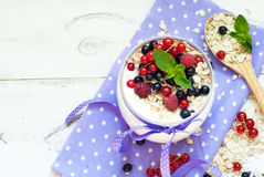 Yogurt with berries and oat flakes Stock Images