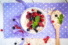 Yogurt with berries and oat flakes Stock Photography