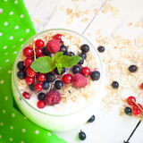 Yogurt with berries and oat flakes Royalty Free Stock Photo