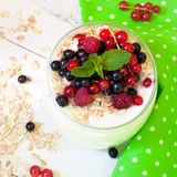 Yogurt with berries and oat flakes Royalty Free Stock Photography