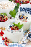 Yogurt with berries and products for healthy breakfast, top view Royalty Free Stock Photos