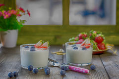 Yogurt with berries Stock Images