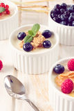 Yogurt with berry fruits Royalty Free Stock Images