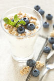 Yogurt bianco con il musli ed i mirtilli Immagine Stock Libera da Diritti