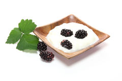 Yogurt with blackberry Stock Images