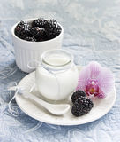 Yogurt with bllackberries in a glass jar Stock Photo