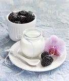 Yogurt with bllackberries in a glass jar stock photo