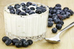 Yogurt and blueberries Royalty Free Stock Images