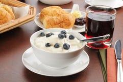 Yogurt with blueberries Stock Image