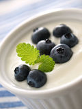 Yogurt and blueberries. Yogurt with fresh blueberries Royalty Free Stock Images