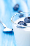 Yogurt with blueberries Royalty Free Stock Photography