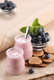 Yogurt with blueberries in a glass jar and blueberries in a glas Stock Images