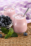 Yogurt with blueberries in a glass jar and blueberries in a glas Royalty Free Stock Photography