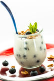 Yogurt with blueberries in a glass Stock Photos