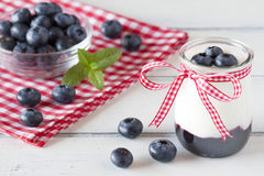 Yogurt and blueberries Royalty Free Stock Photography