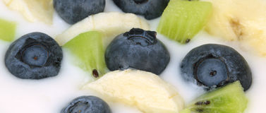 Yogurt with blueberries, kiwi and banana slices Stock Photography