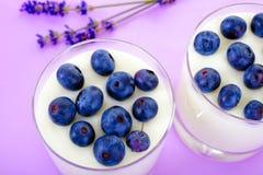 Yogurt with blueberry Stock Images