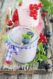 Yogurt with blueberry and red currant Stock Photos
