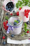 Yogurt with blueberry and red currant Stock Images