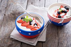Yogurt bowl with blueberries and strawberries Royalty Free Stock Images